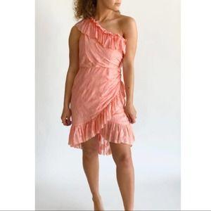 NWT Ulla Johnson Floral Dress Valentine's Pink